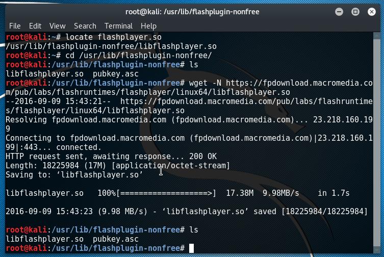 installer flash player kali linux fond d'écran